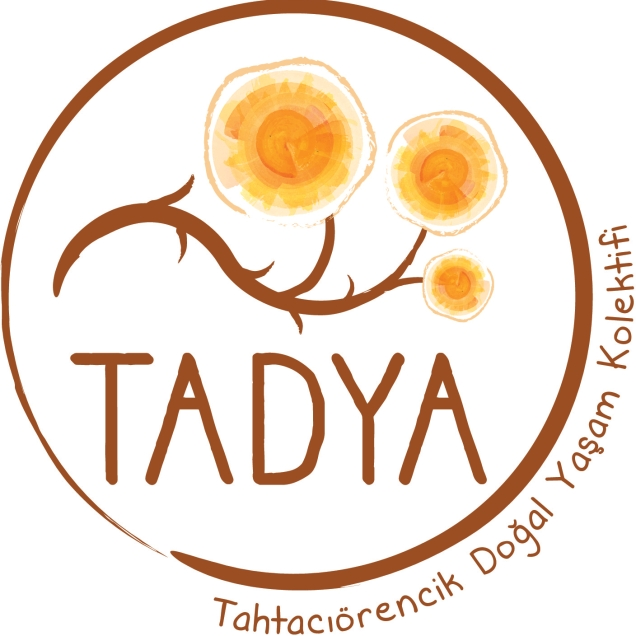 Tadya_logo